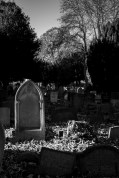 gravebnwweb